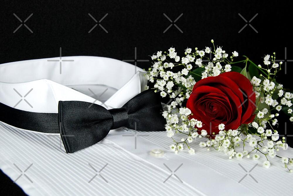 Tuxedo Night by Maria Dryfhout