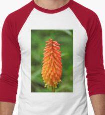 Torch Lily Men's Baseball ¾ T-Shirt