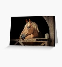 Suffolk Punch Horse Greeting Card
