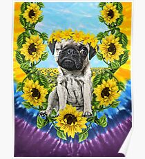 Sunflower Pee Wee Poster