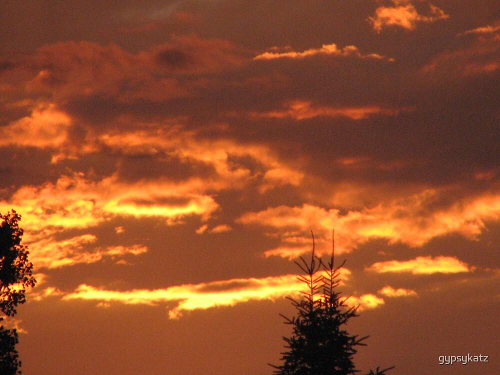 our evening sky  by gypsykatz