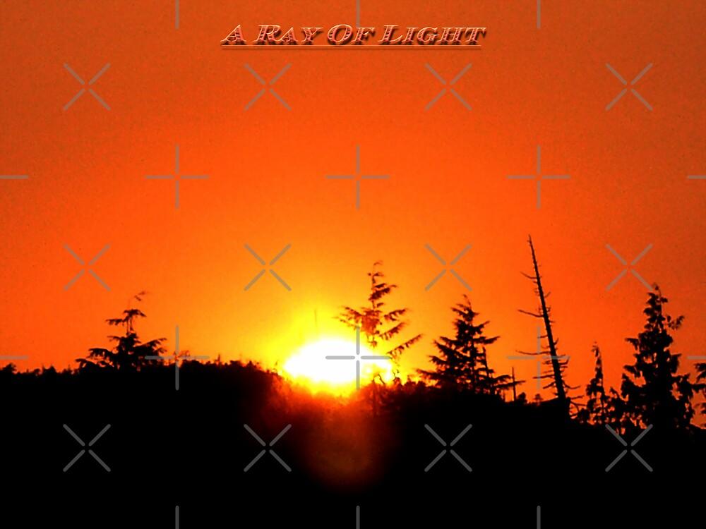 A Ray Of Light by Gail Bridger