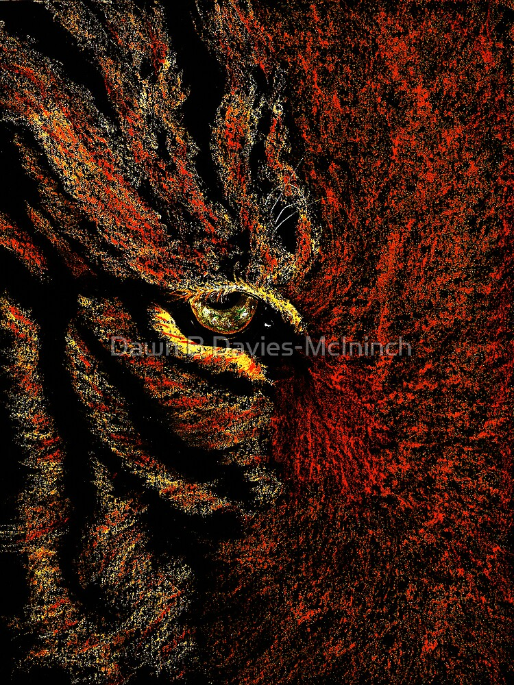 Tiger Eye by Dawn B Davies-McIninch