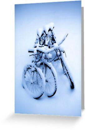 Keep warm by Geir Floede