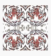 Tiger Japanese style Photographic Print