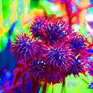 aliens ate my brain by Christopher Birtwistle-Smith
