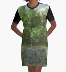 Discovery Graphic T-Shirt Dress