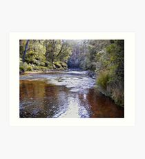 dip river tasmania Art Print