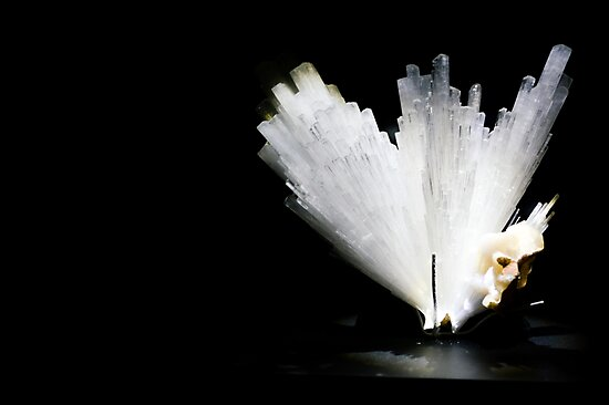 White Crystal at HMNS by Kimberly Tirso