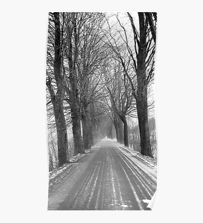 Winter road, Jizera mountains, Czech Republic Poster