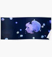 Cute Purple Jellyfish in Ocean Poster