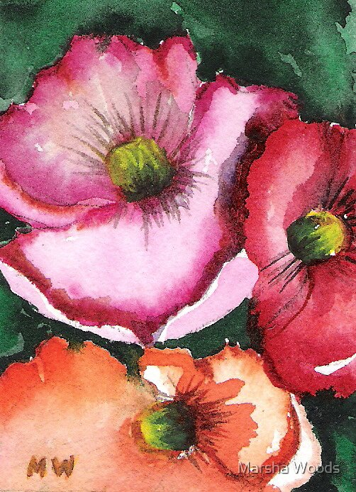 Poppies II by Marsha Woods