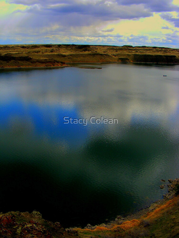 Cool Reflection by Stacy Colean