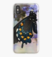 Drying his wings iPhone Case/Skin