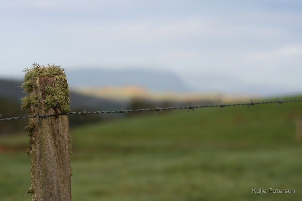 Fence post at Ashgrove Cheese In Tasmania by Kylie Paterson