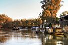 Early Evening Light on the Murray, Victoria by Christine Smith