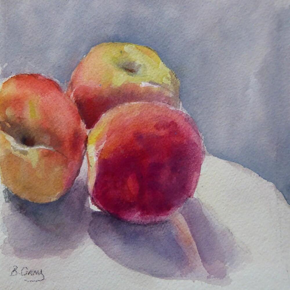 Peaches by Barbara Gray