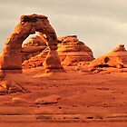 Delicate Arch by Randy Richards