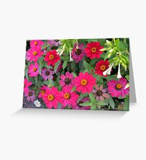 Natural background with pink and purple flowers and green leaves  Greeting Card