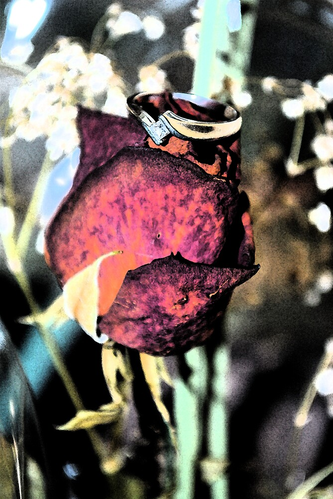 ring a rose  by shanus