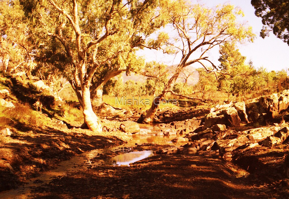 Flinders Ranges by Mishka Gora