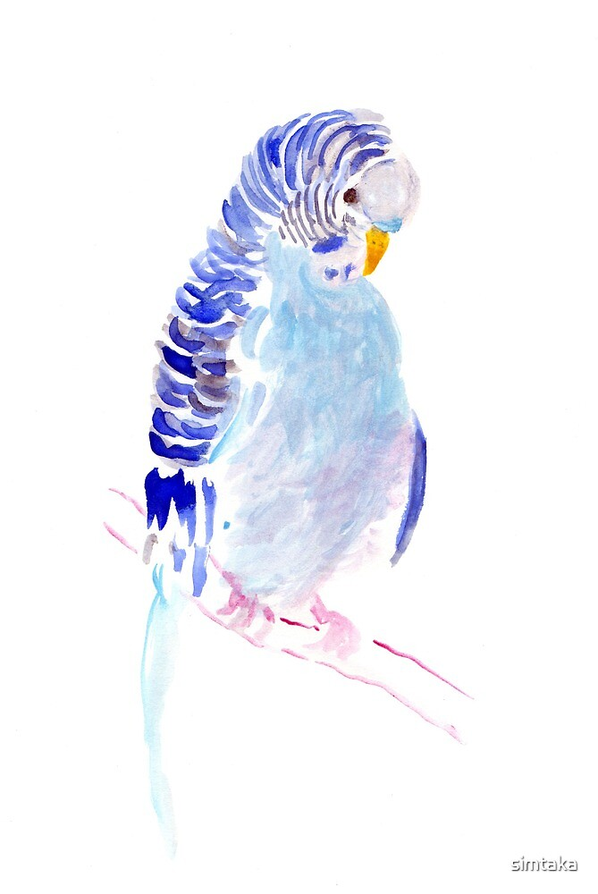 Watercolour Parakeet by simtaka