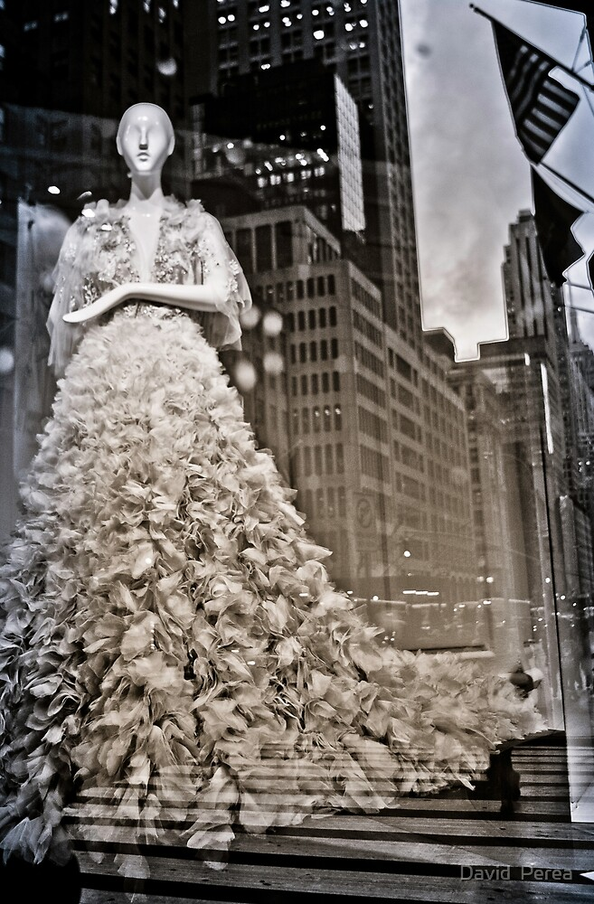 Sophistication, Maiden of NYC by David  Perea