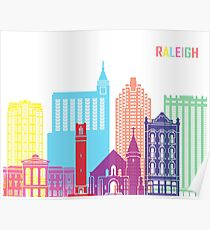 Raleigh V2 skyline pop Poster