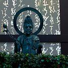 Autumn in Japan:  Enlightenment in the Dark by Jen Waltmon