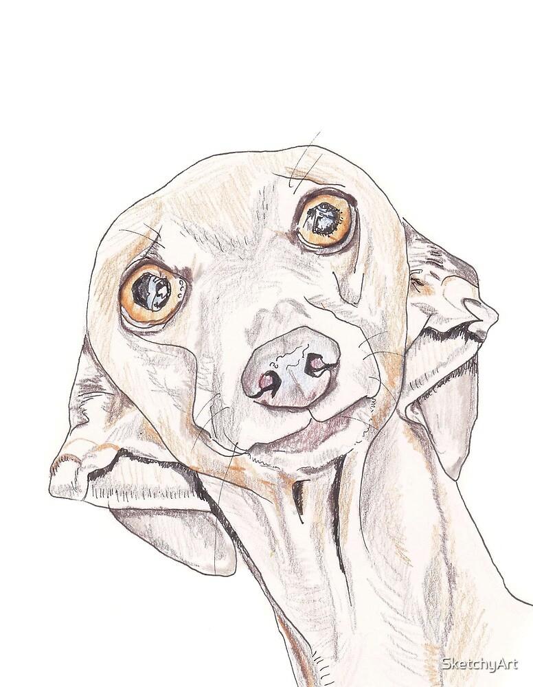 Italian Greyhound 1 by SketchyArt