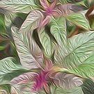 Amaranthus oil paint effect by stuwdamdorp