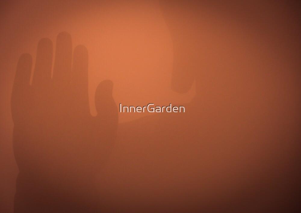Mysterious Buddha by InnerGarden