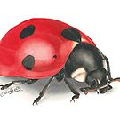 Love Bug by Michelle Collier