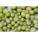 Green cherry tomato's oil paint effect by stuwdamdorp
