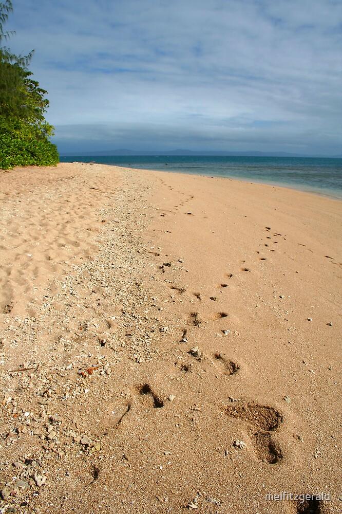 Island Footprints by melfitzgerald