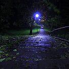A rainy late October Night, Brinkburn Denes by Ian Alex Blease
