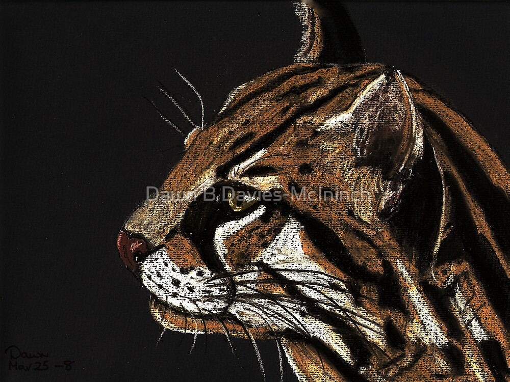 Ocelot by Dawn B Davies-McIninch