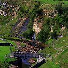 Intake Bridge ,Bog Scar and Sleightholme Beck, North Pennines, England. by Ian Alex Blease