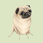 Sweet Fawn Pug by Sophie Corrigan