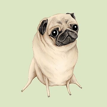 Sweet Fawn Pug by SophieCorrigan