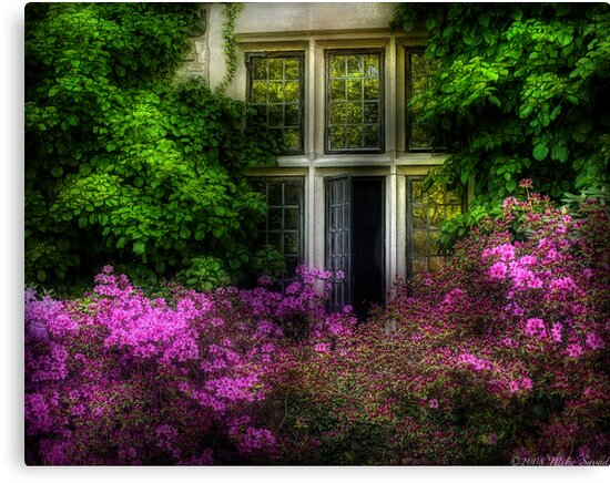 A window by Michael Savad