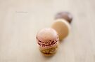 Creamy French Macarons by Yannik Hay