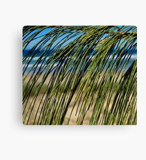 Beach Screen Canvas Print