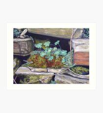 Mossy Nook Art Print