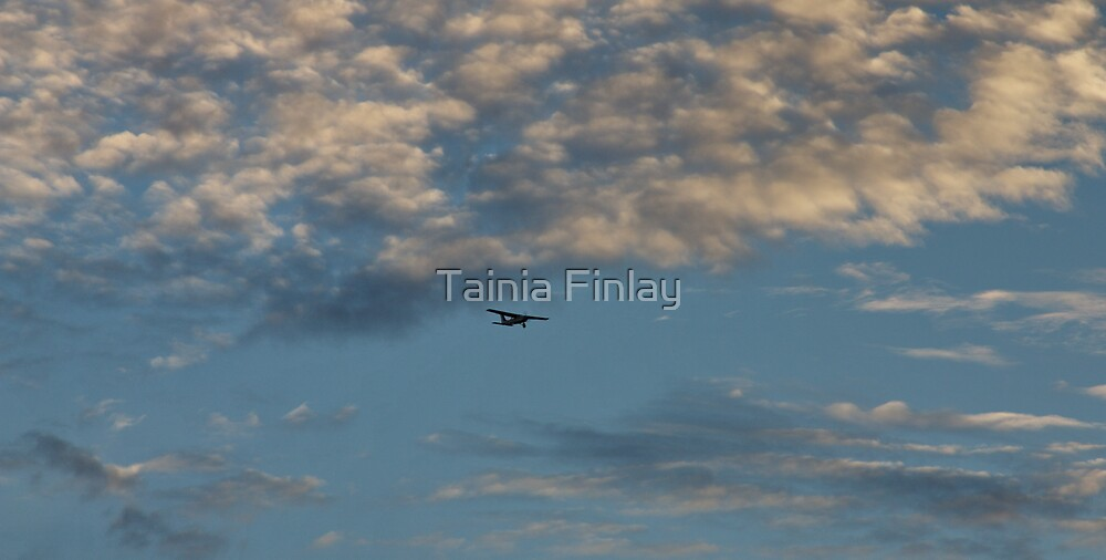 Fly Away by Tainia Finlay