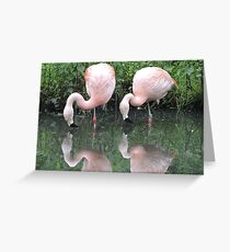 Duet Reflected Greeting Card