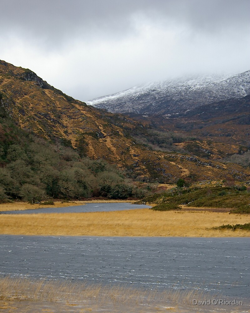 Winter In Killarney by David O'Riordan