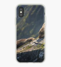 Milford Sound New Zealand Pelzrobben iPhone-Hülle & Cover