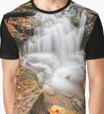 Lowzone Falls Graphic T-Shirt