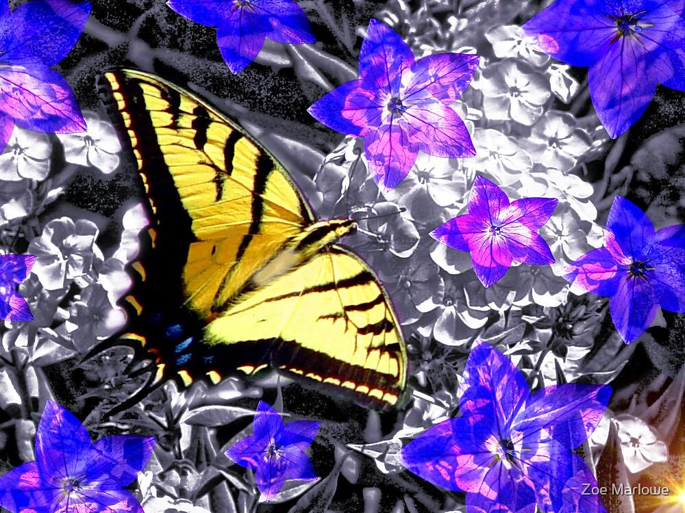 Summery Swallowtail by Zoe Marlowe